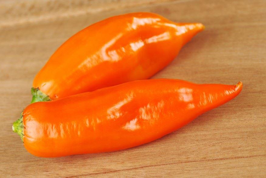 bogyós chili paprika