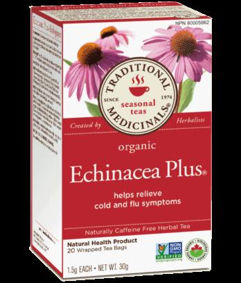 Echinacea filteres tea