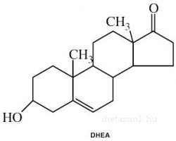 DHEA molekula